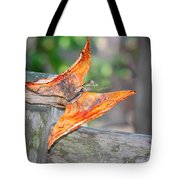 Autumn - The Year's Loveliest Smile Tote Bag by Christine Till