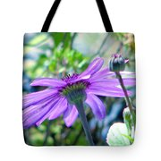 Avatar's Pericallis Tote Bag by Rory Sagner