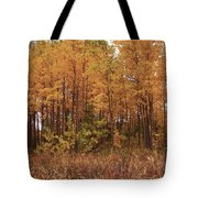 Awesome Aspens Tote Bag by Carol Cavalaris