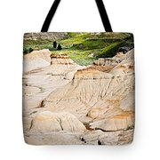 Badlands In Alberta Tote Bag by Elena Elisseeva
