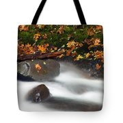 Balance Of The Seasons Tote Bag by Mike  Dawson