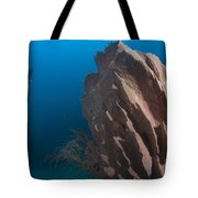 Barrel Sponge And Diver, Papua New Tote Bag by Steve Jones