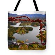 Bartok Tote Bag by Skip Hunt
