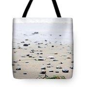Beach Detail On Pacific Ocean Coast Of Canada Tote Bag by Elena Elisseeva