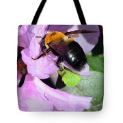 Bee On Azalea Bloom Tote Bag by Lisa Phillips