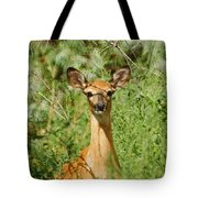 Being Watched Tote Bag by Ernie Echols