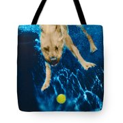 Belly Flop Tote Bag by Jill Reger
