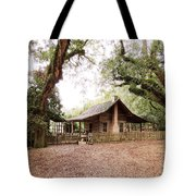 Big Bend Farmhouse Tote Bag by Marilyn Holkham