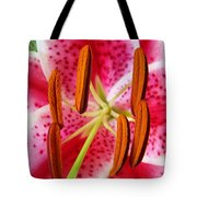 Big Lily Flower Art Prints Pink Lilies Floral Tote Bag by Baslee Troutman