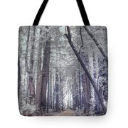 Big Sur State Park Tote Bag by Jane Linders