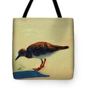 Bird On Daytona Beach Tote Bag by David Lane