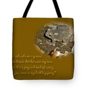 Birthday Party Invitation - Common Toad - Child Tote Bag by Mother Nature