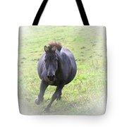 Black Zebra Tote Bag by Karol  Livote