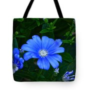 Blue Magic Tote Bag by Byron Varvarigos