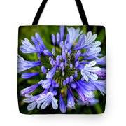 Blue On Blue Tote Bag by Karen Wiles