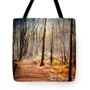Boardwalk Tote Bag by Jai Johnson