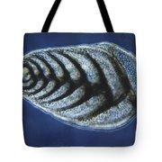 Bolivina Robusta Lm Tote Bag by Eric V. Grave