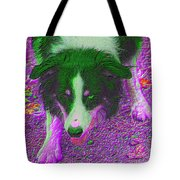 Border Collie Stare In Colors Tote Bag by Smilin Eyes  Treasures