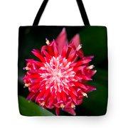 Bromeliad Bloom Tote Bag by Rich Franco