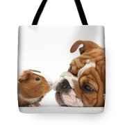 Bulldog Pup Face-to-face With Guinea Pig Tote Bag by Mark Taylor