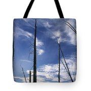 Burnt Trunks Of Black Spruce, Boggy Tote Bag by Darwin Wiggett