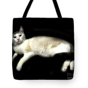 C-a-t In Repose  Tote Bag by Peter Piatt