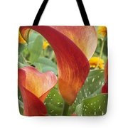 Calla Lily Zantedeschia Sp Captain Tote Bag by VisionsPictures