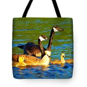 Canada Geese Family Tote Bag by Paul Ge