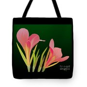Canna Lilly Whimsy Tote Bag by Rand Herron