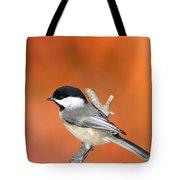 Carolina Chickadee - D007812 Tote Bag by Daniel Dempster