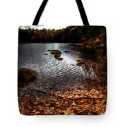 Cary Lake After The Storm Tote Bag by David Patterson