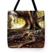 Centenarian Tree Tote Bag by Carlos Caetano