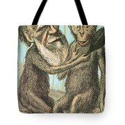 Charles Darwin Caricature, 1874 Tote Bag by Science Source