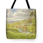 Chatsworth Tote Bag by Tim Scott Bolton