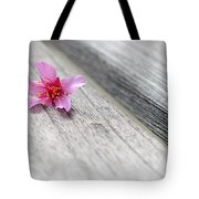 Cherry Blossom On Bench Tote Bag by Lisa Phillips