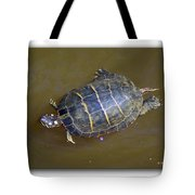Chester River Turtle Tote Bag by Brian Wallace