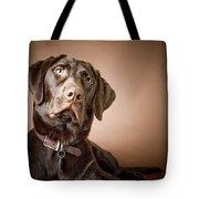 Chocolate Labrador Retriever Portrait Tote Bag by David DuChemin