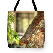 Climbing Down Tote Bag by Ester  Rogers