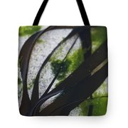 Close-up Of Seaweed In Water Tote Bag by Axiom Photographic