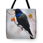 Common Grackle Tote Bag by Tony Beck