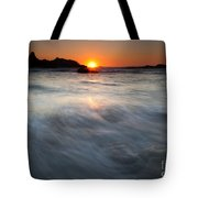 Concealed By The Tides Tote Bag by Mike  Dawson