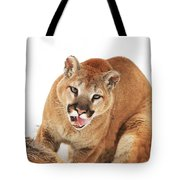 Cougar With Prey Tote Bag by Richard Wear