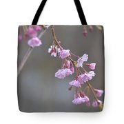 Crepe Myrtle Tote Bag by Lisa Phillips