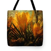 Crocus in Spring Bloom Tote Bag by Ann Powell
