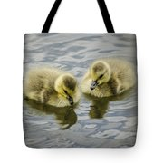Curiosity Tote Bag by Heather Applegate