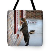 Curiosity Inspirational Cat Photograph Tote Bag by Jai Johnson