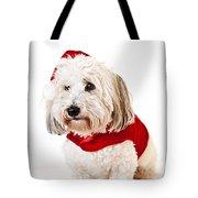 Cute dog in Santa outfit Tote Bag by Elena Elisseeva