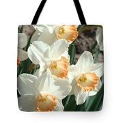 Daffodil Flowers Art Prints Spring Floral Tote Bag by Baslee Troutman