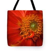 Dahlia Persuasion Tote Bag by Kathy Yates