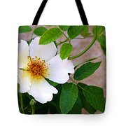 Dancing Flora Tote Bag by Andee Design